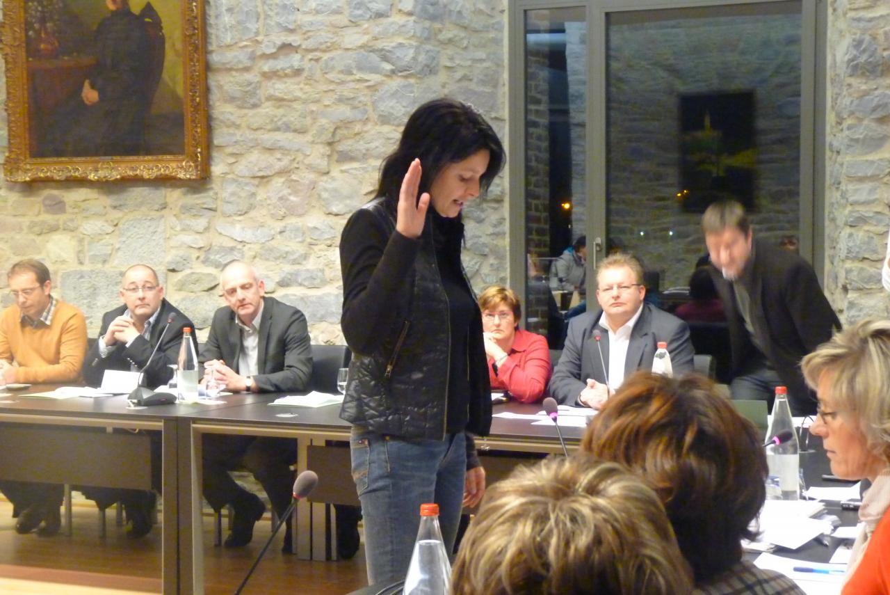 Installation du conseil 3/12/2012